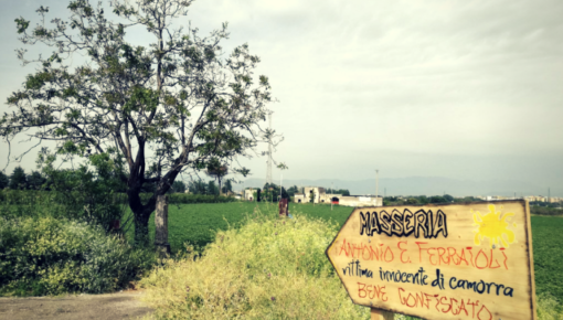 Masseria Ferraioli di Afragola: via la camorra, qui c'è un'impresa sociale agricola